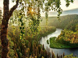 rio finlan